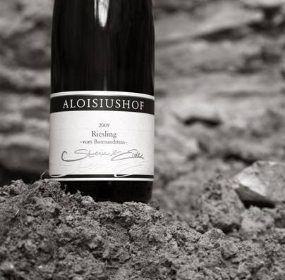 Aloisiushof