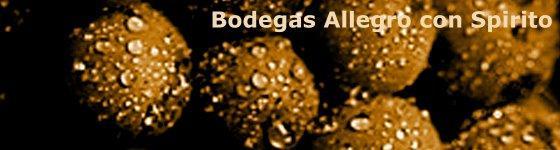 Bodegas Allegro con Spirito