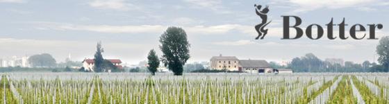 Casa Vinicola Botter