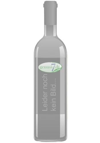 2020er Weingut Tesch Laubenheimer St. Remigiusberg Riesling trocken QbA